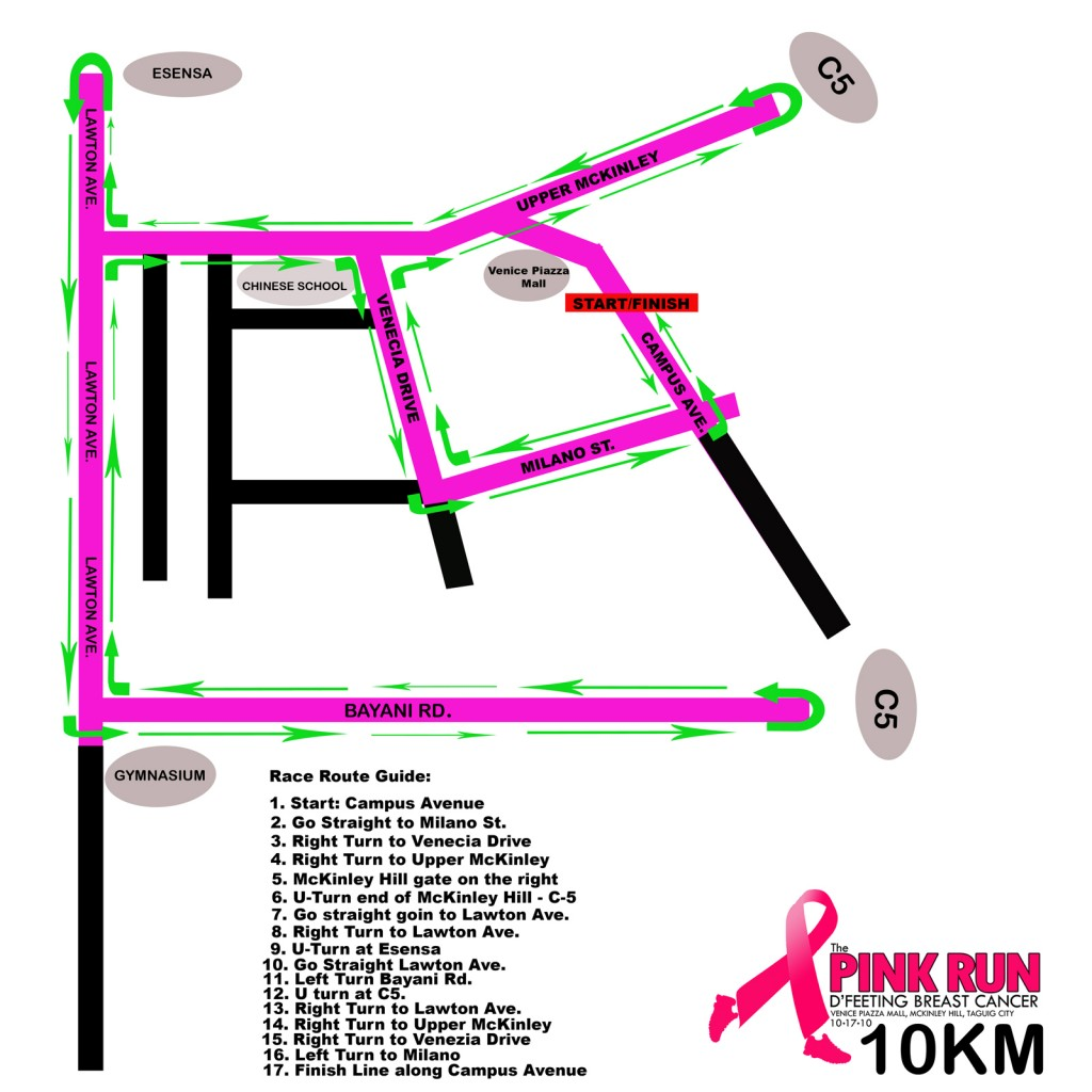Pink Run 2010 - 10K Race Map