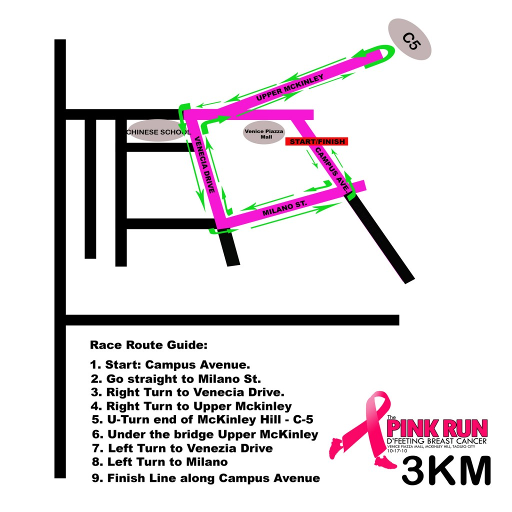 Pink Run 2010 - 3K Race Map
