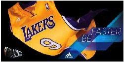 LA Lakers REV 30