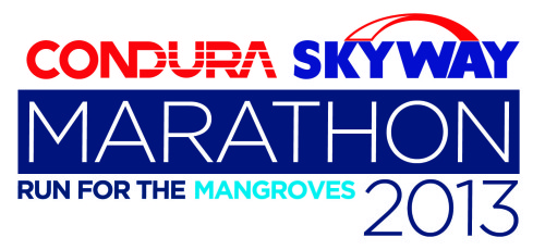Condura Skyway Marathon 2013 race results and photos