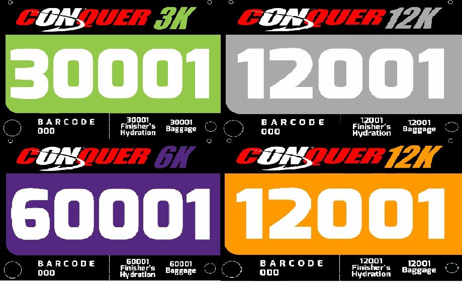 conquer-2013-bib-design