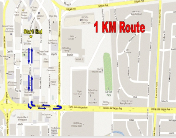 dream-chase-2013-1k-route-map