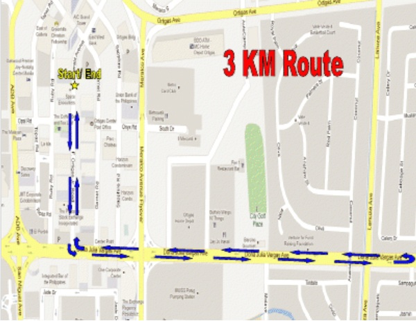 dream-chase-2013-3k-route-map