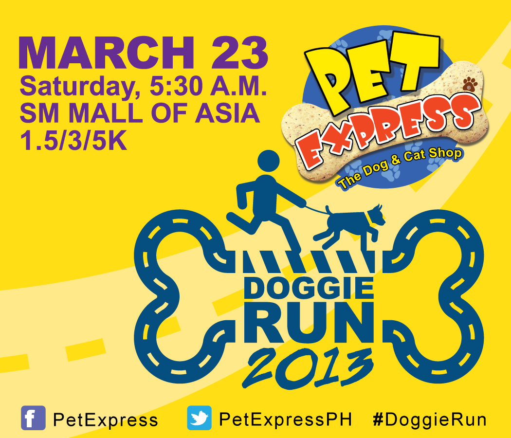 pet express doggie run 2013 results and photos