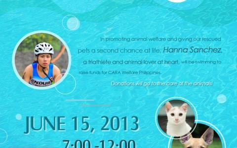cara-swim-2013-poster
