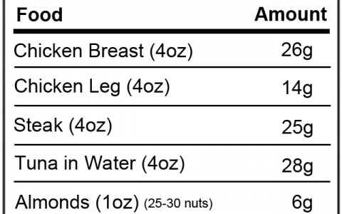 protein-in-foods-2013