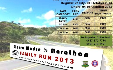SMM-poster-2013