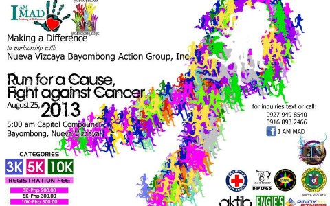 run-for-a-cause-fight-against-cancer-2013-poster