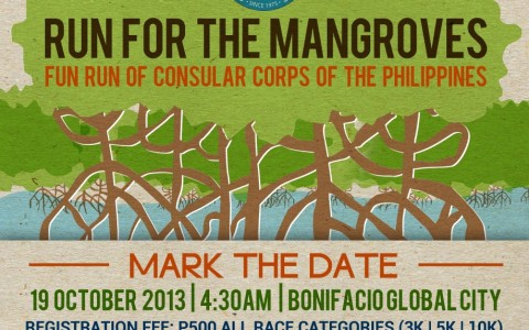 run-for-the-mangroves-ph-2013-poster