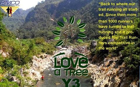 love-a-tree-2014-trail-marathon