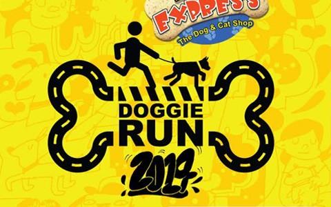 pet express doggie run 2014 cover
