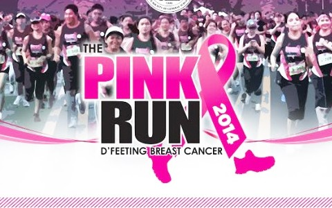 Pink Run 2014 - cover
