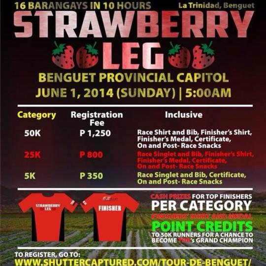tour-de-benguet-strawberry-leg-2014-poster