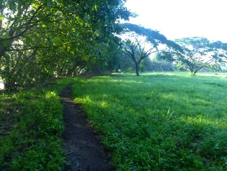Urban-Trail-15K-Run-Route-Photos-4