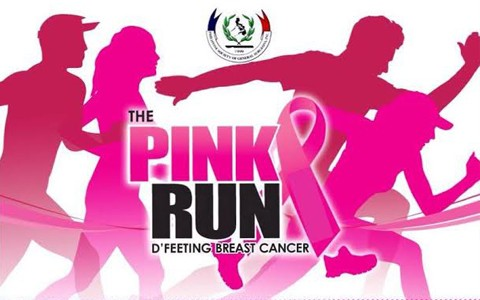 The-Pink-Run-2015-Cover