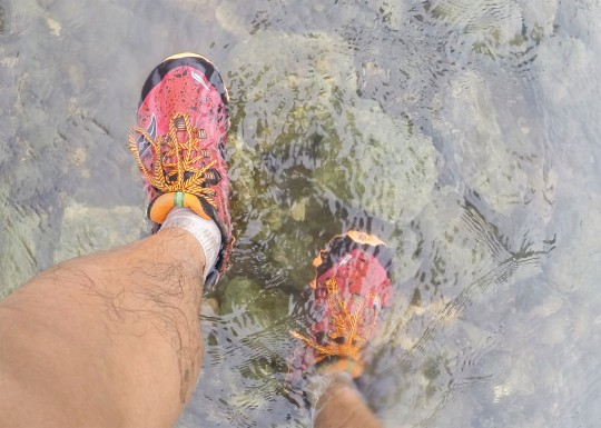 conquer-tanay-saucony-nomad-5