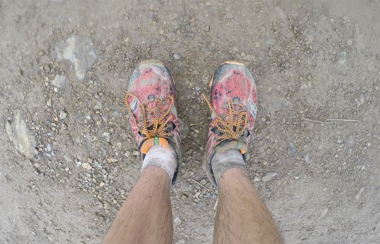 conquer-tanay-saucony-nomad-6