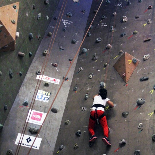 rox-wall-climbing-photo