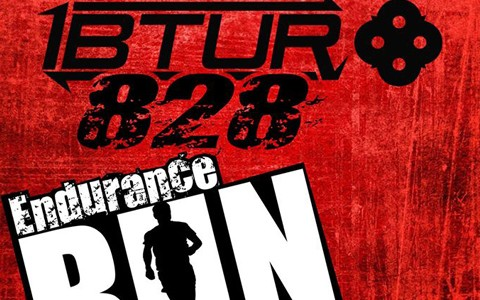 IBTUR-828-2016-Cover