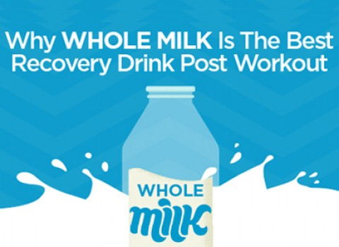 pf-whole-milk-web-2